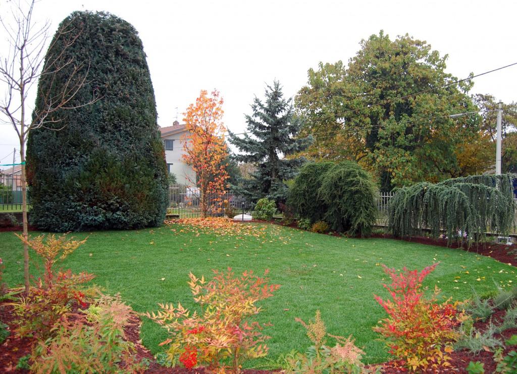 Monica botta architecture landscape healing gardens - Progetto giardino privato ...