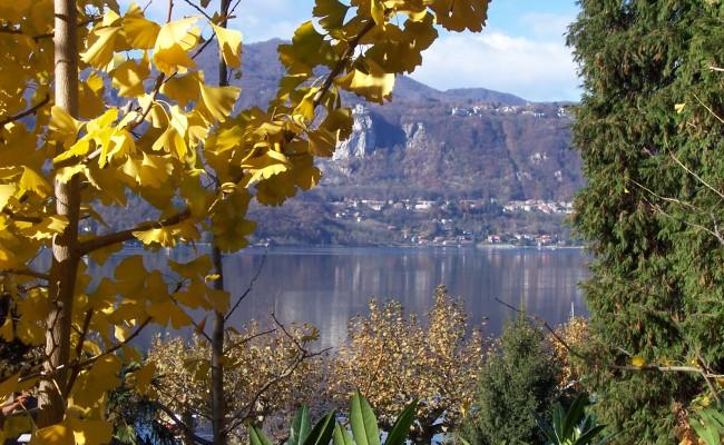 05_Giardino lago d'Orta_ vista dai percorsi