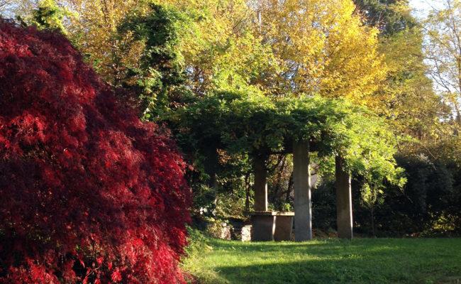 1_Parco Orta San Giulio_ Monica Botta