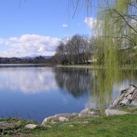 Riqualificazione delle aree del lungo lago del Capoluogo incentrata sulla valorizzazione del Parco della Folaga Allegra