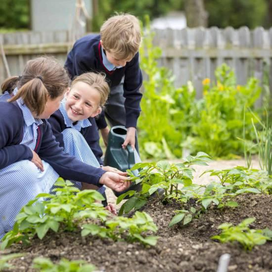 Il National Geographic si interroga: il giardinaggio può offrire la chiave per la felicità, per una vita più sana?