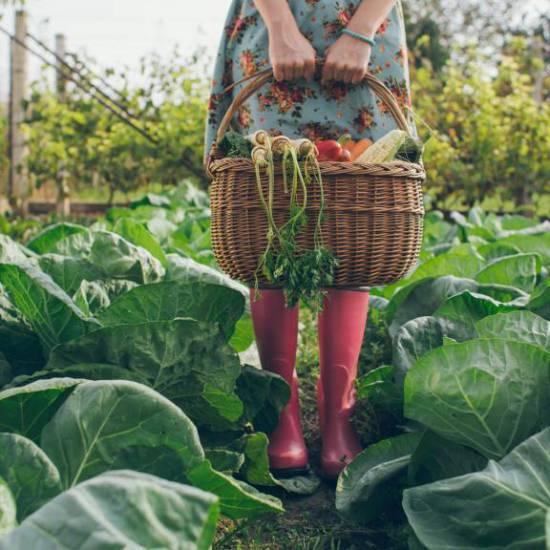 Se sei una donna, ti occupi di verde e vivi immersa nella natura, vivrai più a lungo.