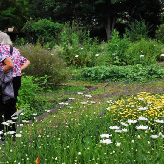 Non chiamateli giardini di terapia se non considerate la malattia