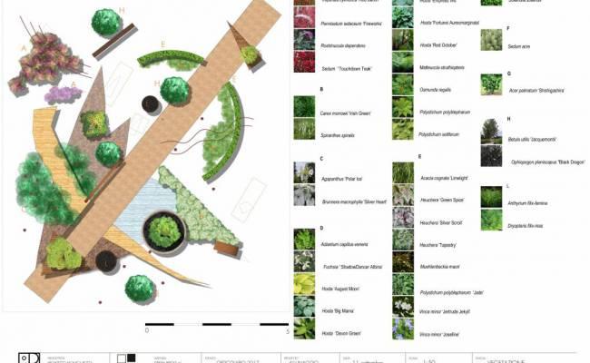 ALLUNAGGIO_ vegetazione_ Orticolario 2017 copia