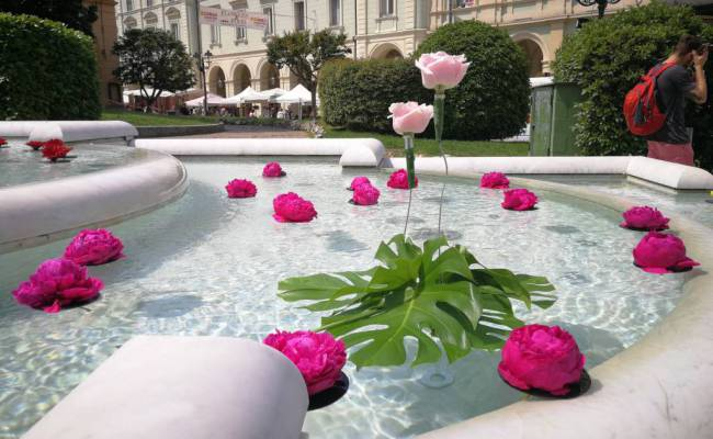 Flowers and Food – Acqui Terme – fontana