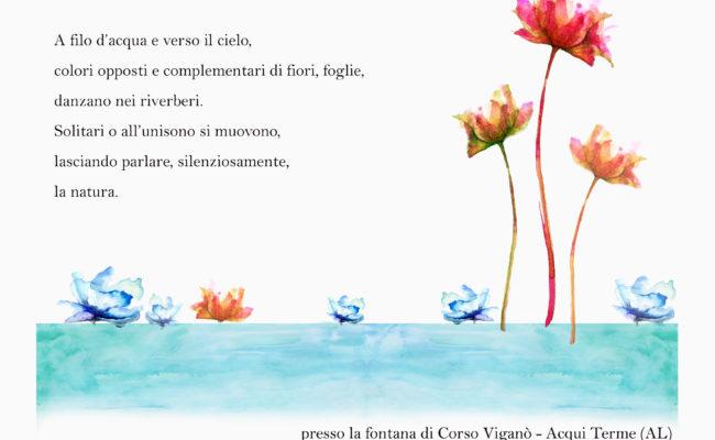 Tutti i colori dei fiori_ monica botta