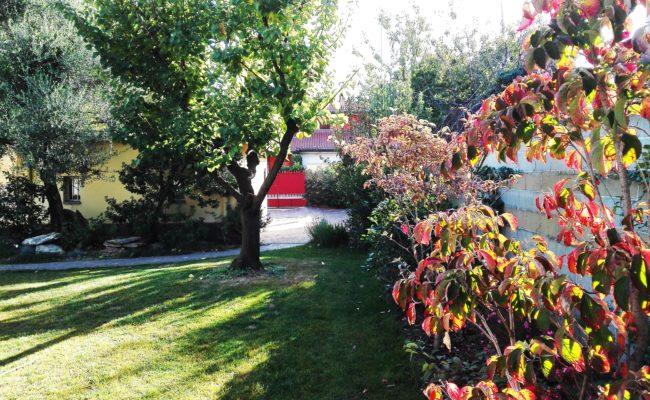 giardino privato_ novara2