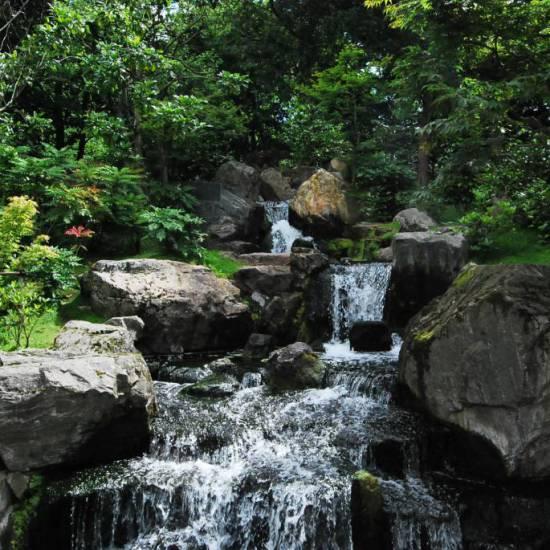 Rigenerare l'attenzione negli ambienti naturali
