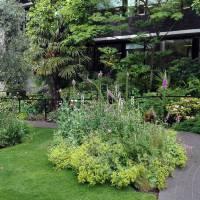 Giardini terapeutici a favore del personale sanitario