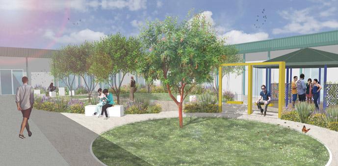 Un healing garden per il personale amministrativo dell'Ospedale
