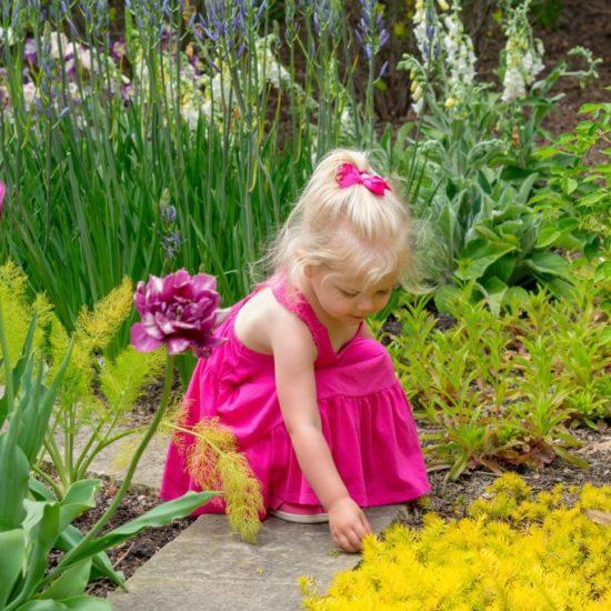 Healing garden: c'è una cura in giardino su Donna Moderna